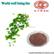 Ginkgo Biloba Leaf Extract Benefits/ Biloba Ginkgo Extract Powder / Ginkgo Biloba P.E.