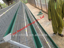 Poultry Battery Cages with installation team in Nigeria