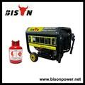 Bison ( China ) Made In China precio de comprimido gnc Gas Natural generador