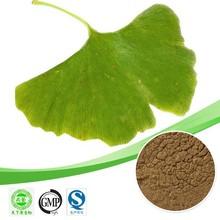 Hot sale Ginkgo Biloba extract/Ginkgo flavone Glycosides 24%/Ginkgo Biloba powder plant extract