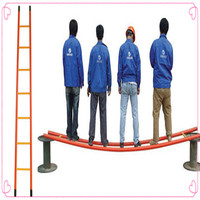 hot sale rolling ladder/frp ladder/aldi ladder