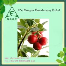 cranberry extract/vaccinium macrocarponl extract with 1-25% Anthocyanidin