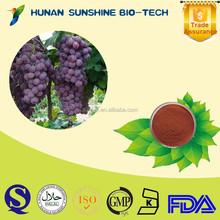Medical product anti-radiation skin care product Grape seed P.E. powder 95% OPC