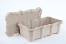 molded Pulp container