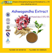 GMP Certified Manufacturer Supply High Quality Ashwagandha Extract