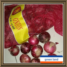 China early red onion