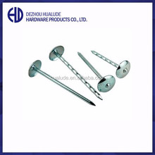 Twisted shank galvanized umbrella head roofing nails