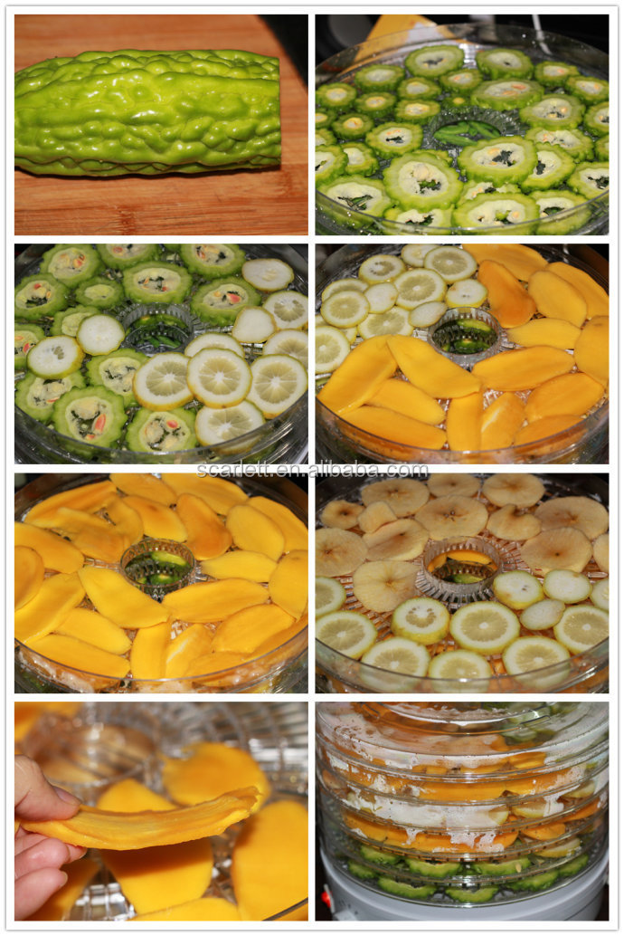 is pumpkin a fruit or vegetable fruit dehydrator