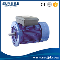 Asynchronous Small Electric Motors