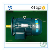 Y2 Series Three Phase Asynchronous 150 hp Electric Motor
