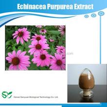 herbal extract Echinacea Purpurea Extract/