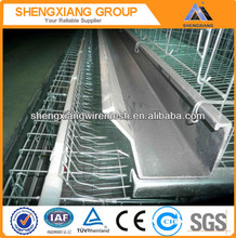 Layer Quail Cage/Chicken Cage With Auto Water System /Poultry Farming Equipment(20 years' factory)