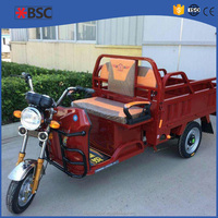 250CC 3 Wheeler adult electric tricycle