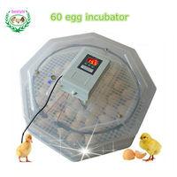 High Efficiency JN2-60 Mini egg incubator JANOEL series 60 eggs brooder selling used incubator