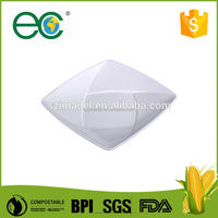 Compostable roasting plate for party