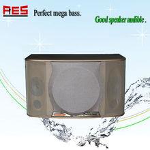Professional powered karaoke speaker use for KTV,meeting,classroom concert China manufacturer