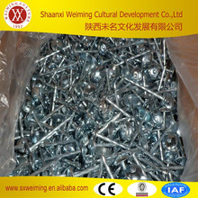 philippines BWG9 factory twist umbrella roofing nail