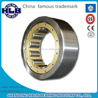 Japanese Technology Competitive Price Roller Bearing NUP2204E Cylindrical Roller Bearing