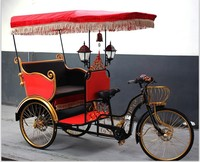 electric auto battery hybrid bike rickshaw for 2 passenger