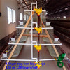 Factory price automatic steel H frame broiler house cage