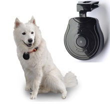import pet animal products from china pet digtal camera
