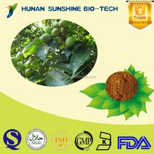 High quality Olive Leaf Extract Powder 10%-60% Oleuropein CAS No. 32619-42-4