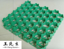 Plastic Grass Grid used for Car Parking Lot Grass Protection/grass grid pavers/driveway hdpe porous grass grid