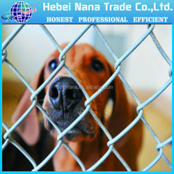 Factory Used Dog Kennels For Sale / Chain Link Dog Kennel For Sale