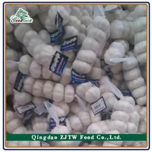 New Produce Fresh Garlic 5p