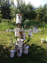 Birch bird cages