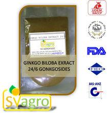 Ginkgo biloba P.E. herbal extract