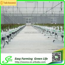 Projeto de efeito estufa para plantas agrícolas de alta qualidade