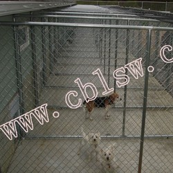 Large dog fence from China factory