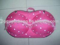 bra holding bag