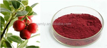 100% Natural Cranberry Fruit Extract Anthocyanidins/proanthocyanidins5% 10% 25% Vaccinium Macrocarpon Extract