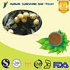 New product losing weight loquat leaf extract powder 10% Corosolic acid