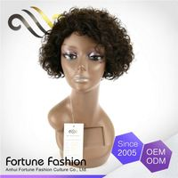 Portable Unprocessed Short Afro Kinky Lace Human Hair Wigs