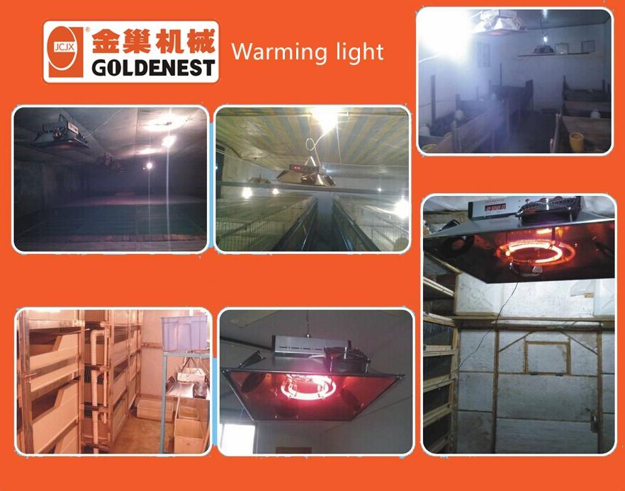 warming lights (1).jpg