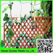 cucumber trellis net&hdpe support flower net&extruded pea and bean net