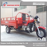 wholesale in China motorized tricycles for adults