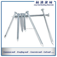 Steel Concrete Nail, Made of 45# Steel, Available in 25 to 150mm Size