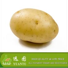 Singapore potato importers need fresh potato