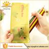 wenzhou cangnan popular 2015 hot sell Clear cute Zipper pvc Pencil Case for school