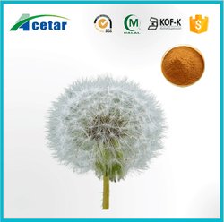 with Kosher, Halal, FDA registered extract of dandelion tea weight loss