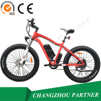 new model two seat pedal assist electric motor road bike with fat tire