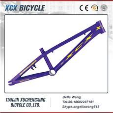 bmx bike frame 016.jpg