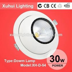 High quality CE ROHS movie theatre dimmable led down light driver
