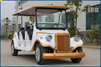 electric sightseeing bus, electric shuttle car to Japan