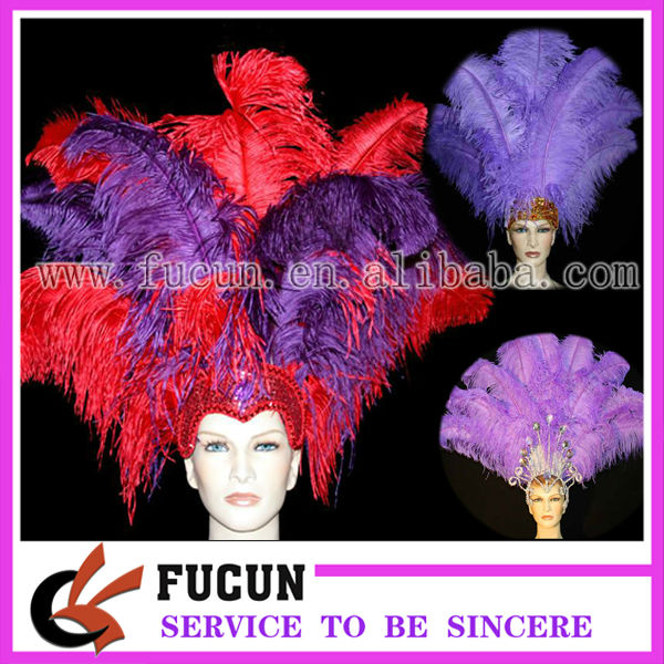 ostrich feather1