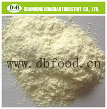 Garlic Powder from Natural China with America/Europe/Asia standard